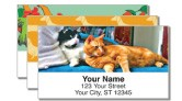 Animal Address Labels